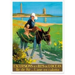 Affiche - Ile de Ré - L'âne en culotte