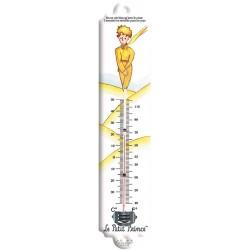 Thermomètre - Le désert